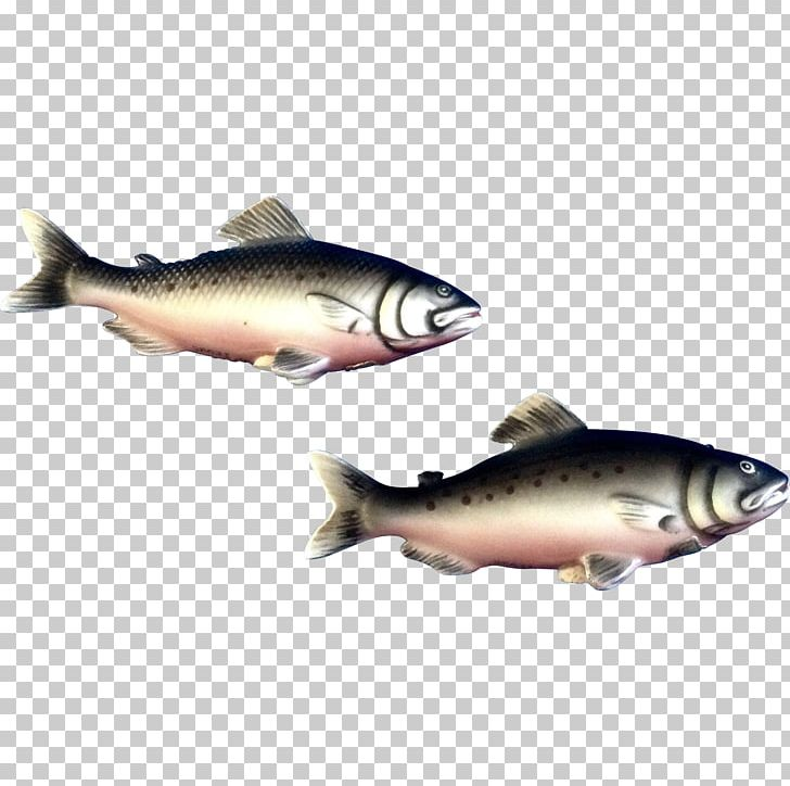 Trout clipart oily fish. Herring salt png animals