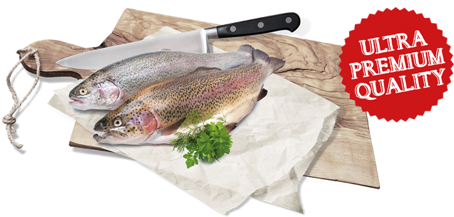 Natural fresh meat finest. Trout clipart oily fish