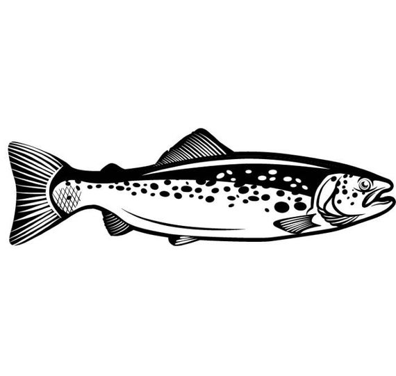 Trout clipart river fish. Fly fisherman fishing tournament