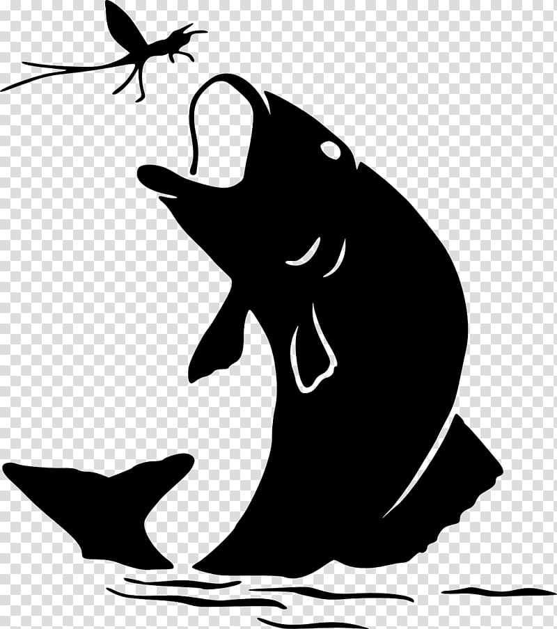 Silhouette bass fishing red. Trout clipart shadow