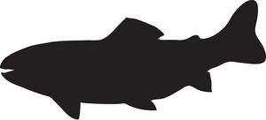 Fish silhouette free download. Trout clipart shadow