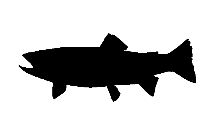 Trout clipart shadow. Free silhouette download clip