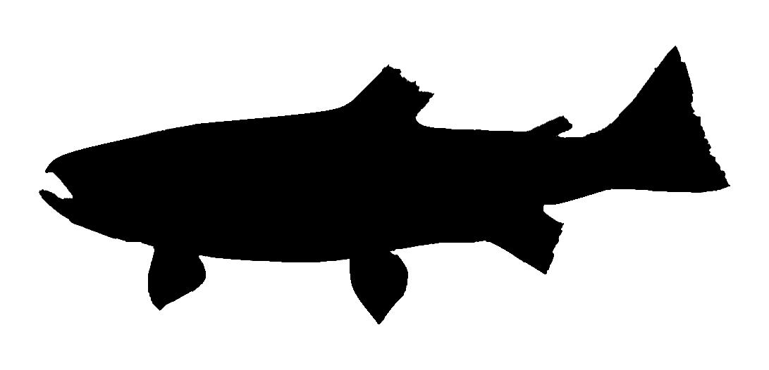 Free download clip art. Trout clipart silhouette