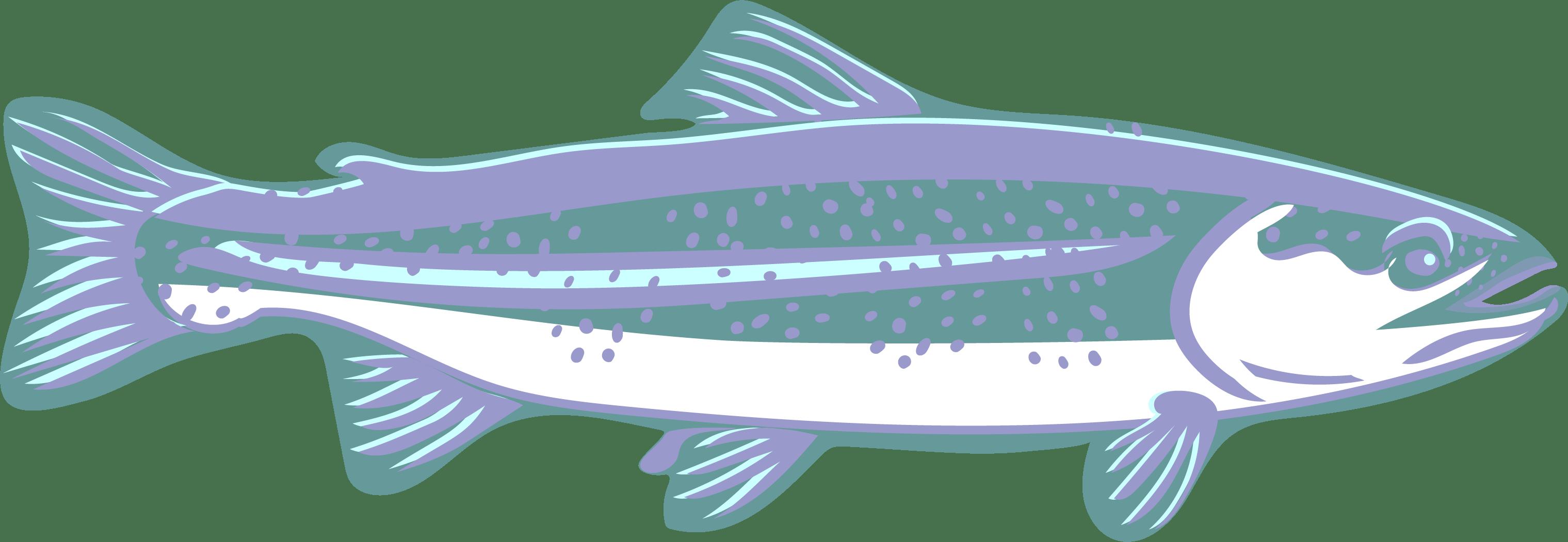Trout clipart speckled trout. Clip art creation creatures