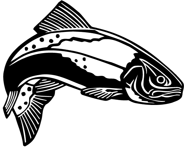 Trout clipart spotted bass. Rainbow clip art seatrout