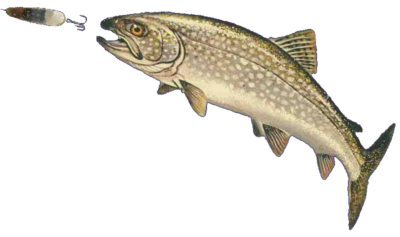 Tackle for fishing deanlevin. Trout clipart trout fisherman