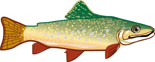 Trout clipart vector. Clip art free in