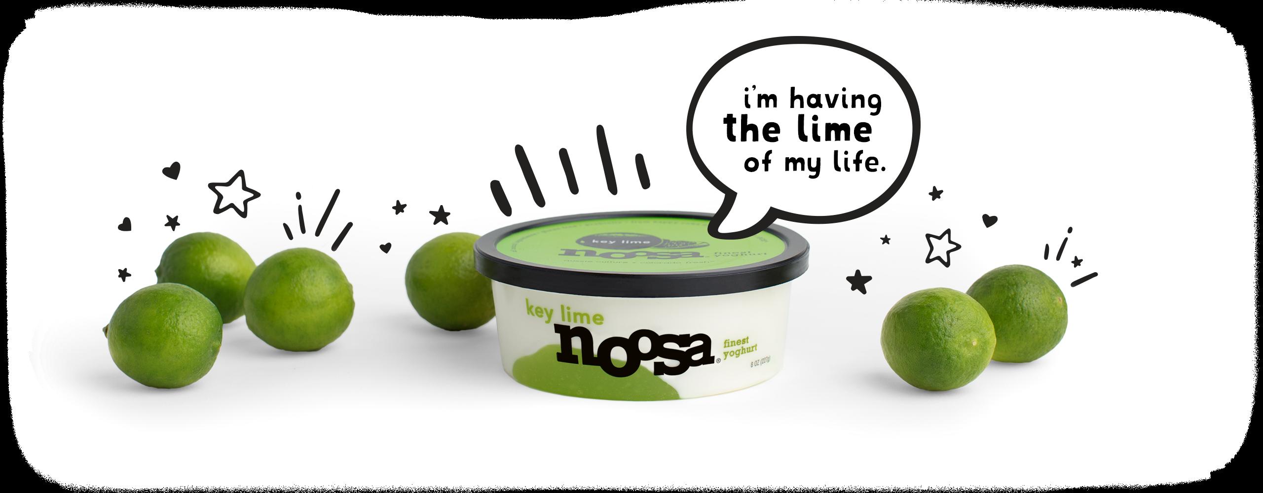 Key lime noosa . Yogurt clipart yogurt tub