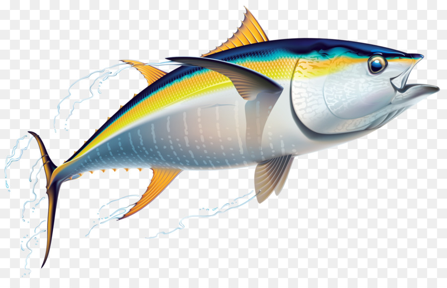 Fishing cartoon fish transparent. Tuna clipart clip art