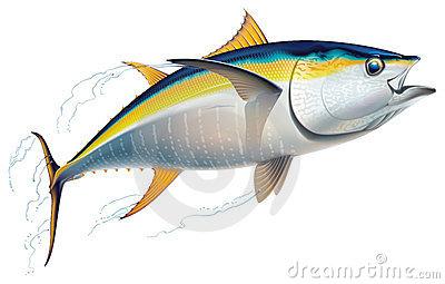 clip art clipartlook. Tuna clipart commercial