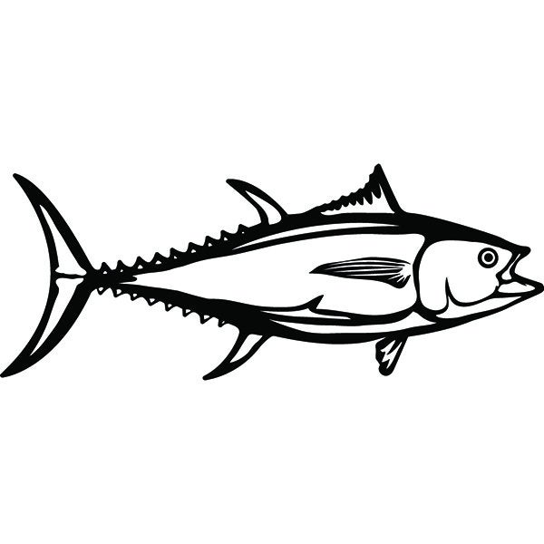 Drawing free download best. Tuna clipart drawn
