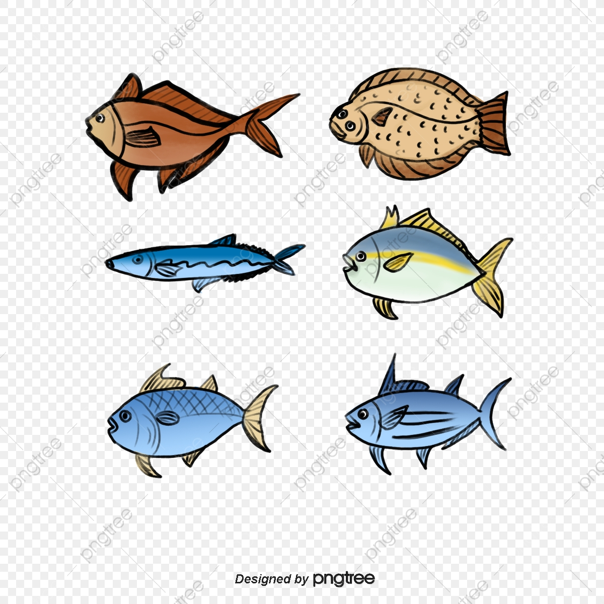 Tuna clipart fish meat. And seafood png transparent