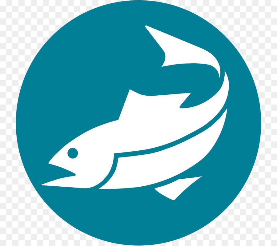 Dolphin cartoon png download. Tuna clipart fishr