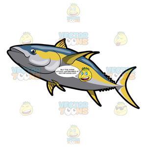 A yellowfin . Tuna clipart large fish