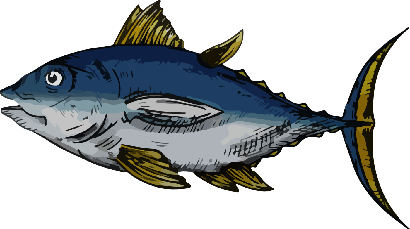 Tuna clipart large fish. Under the sea by