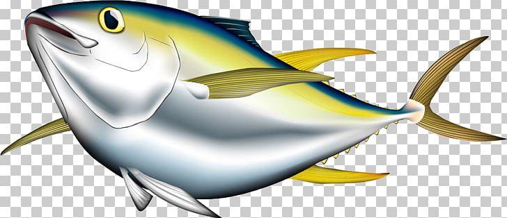Tuna clipart large fish. Bigeye albacore pacific bluefin