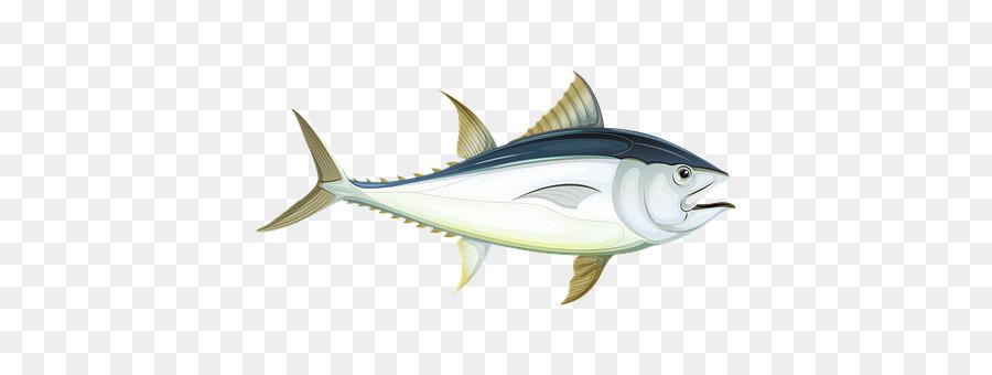 Shark fin background illustration. Tuna clipart mackerel fish