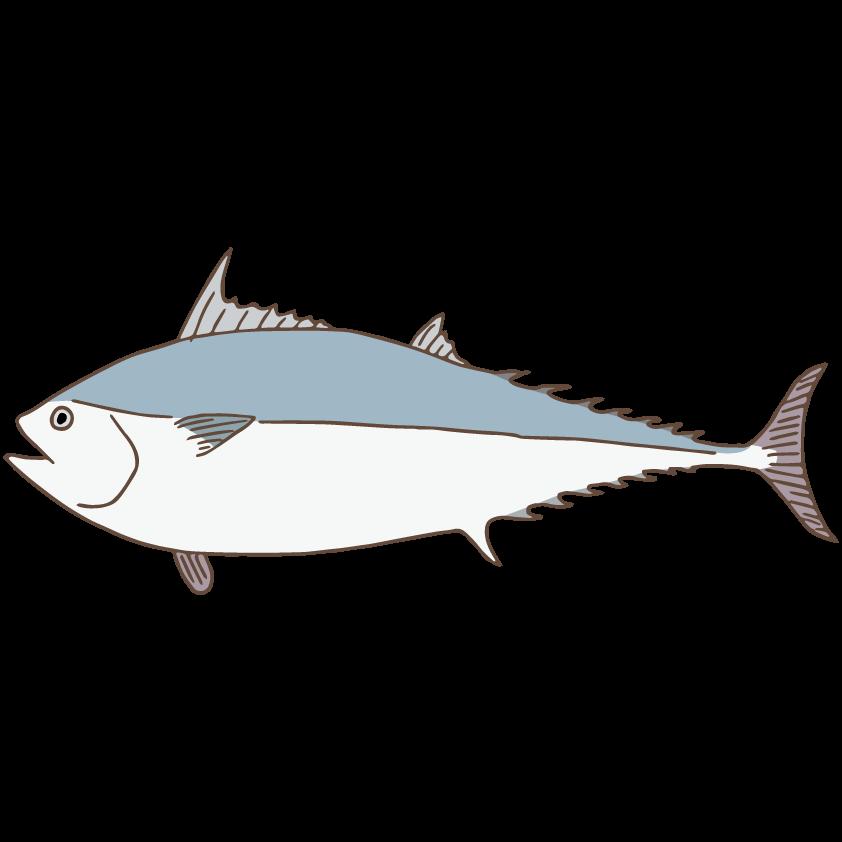 Kawakawa free illust net. Tuna clipart mackerel fish