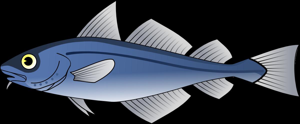 Tuna clipart silver fish. Forgetmenot publicat de eu