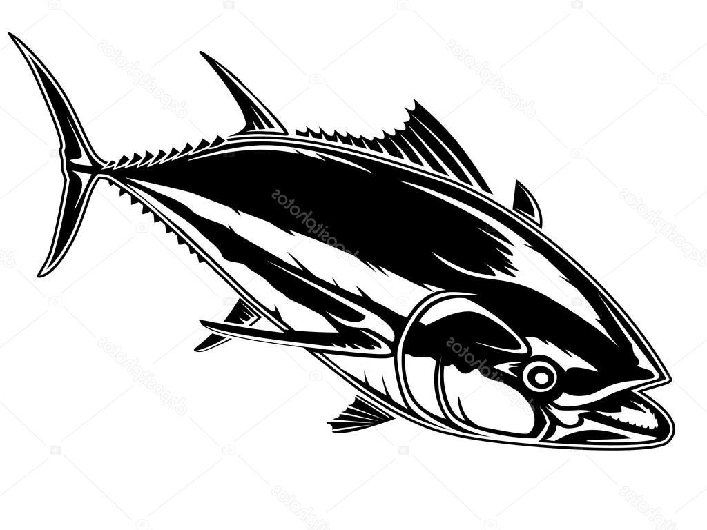 Tuna clipart vector. Best bluefin photos free