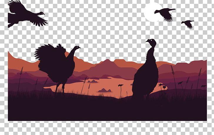 Angora goat turkey duck. Turkeys clipart goose