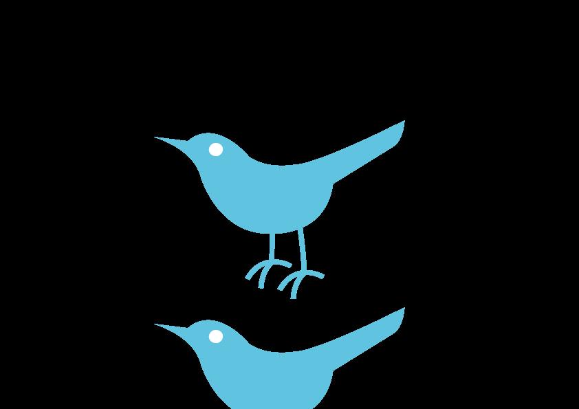 Twitter bird png transparent. Logo background etm icon