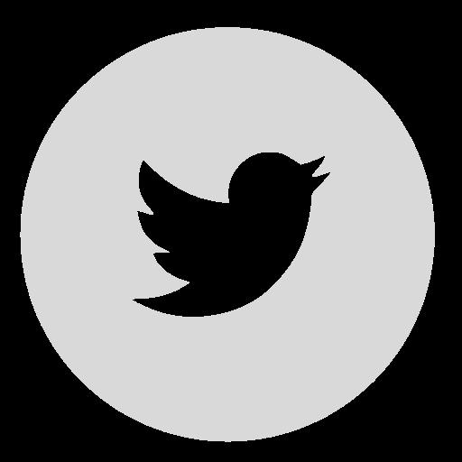 Twitter bird white png. Icon myiconfinder