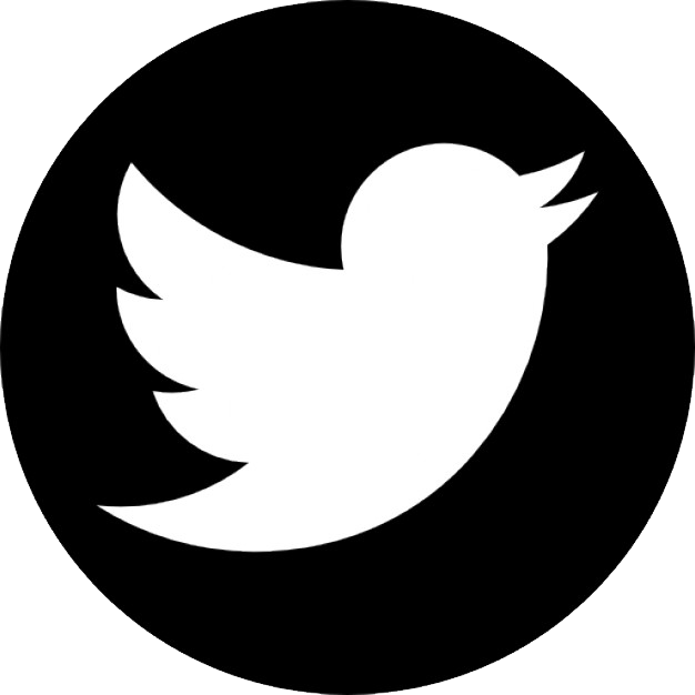twitter logo png transparent background