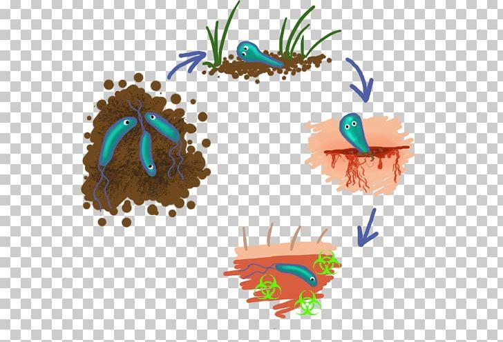 Clostridium tetani tetanospasmin toxin. Vaccine clipart tetanus