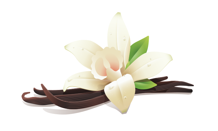 Emulsified mct oil best. Vanilla flower png