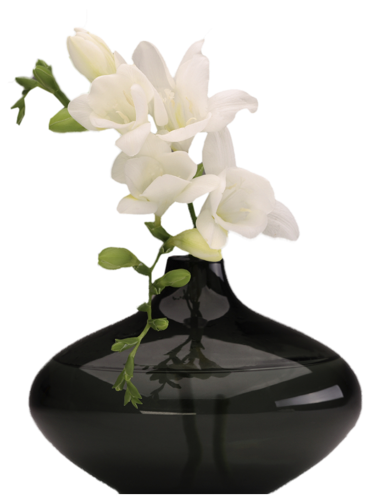Flower vase png. Image purepng free transparent