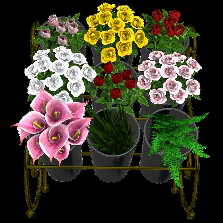 Vase clipart summer flower. Free photo bouquet arrangement