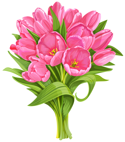 Vase clipart tulip png. Gallery flowers