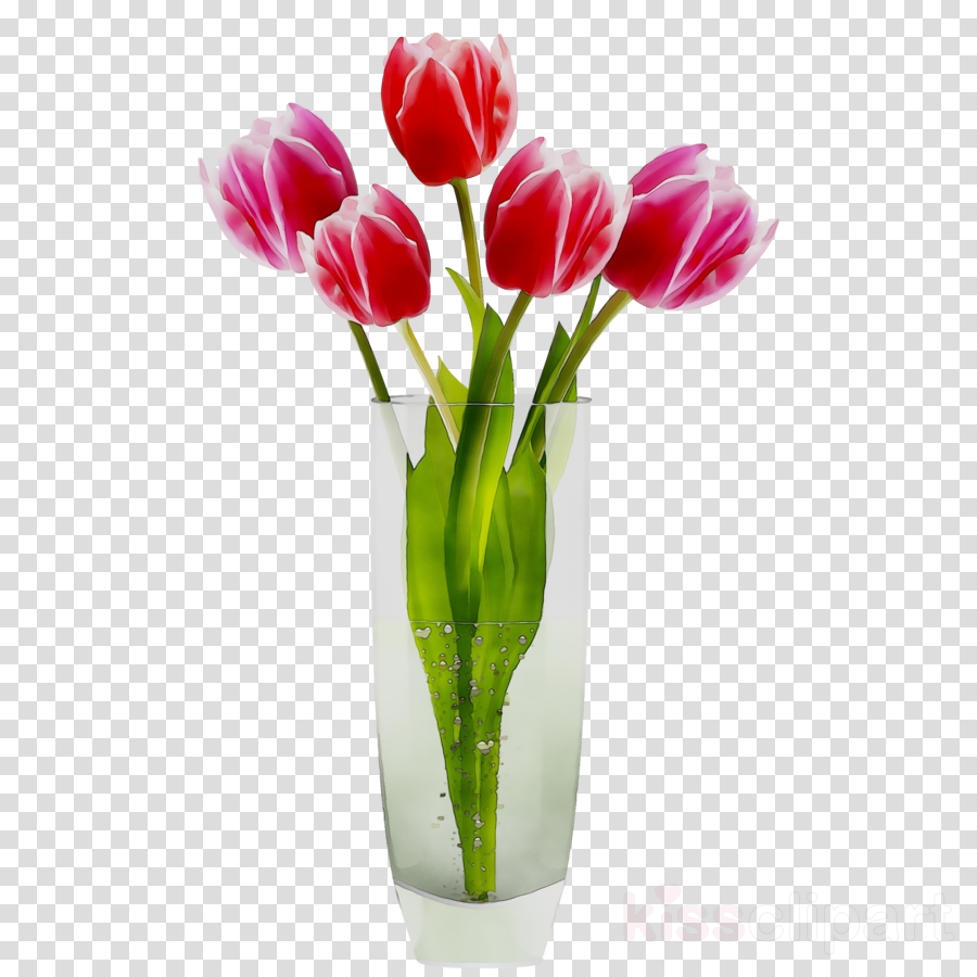 Flower in pink transparent. Vase clipart tulip png