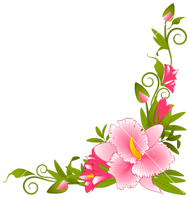 Flower border patterns pinterest. Flowers vector png