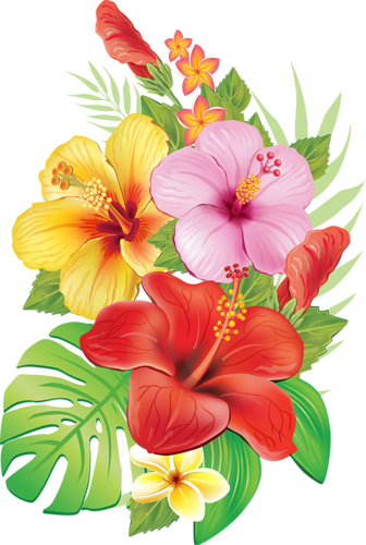 Vector flowers png.  pinterest moana and
