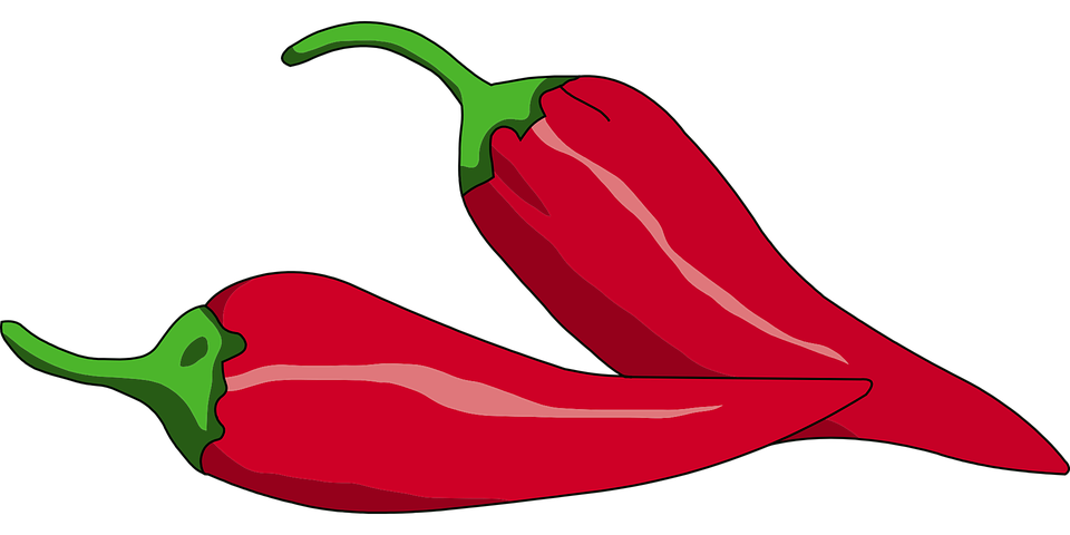 Vegetables clipart vector. Peppers plant red spice
