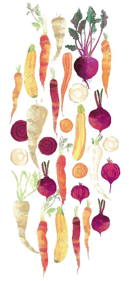 Vegetable floral design painting. Vegetables clipart watercolor