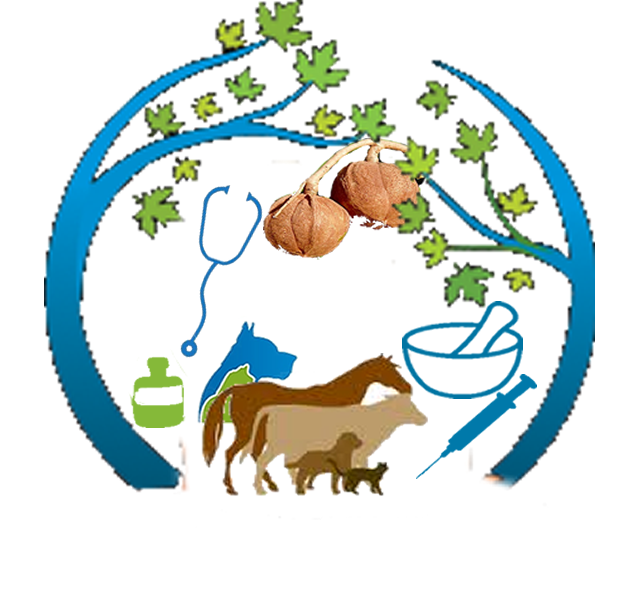 Veterinarian clipart cow. Shaba research