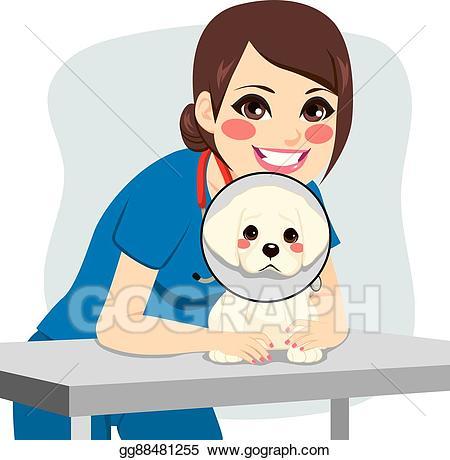 Vector illustration dog collar. Veterinarian clipart female veterinarian