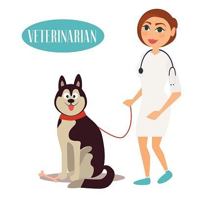 Veterinarian clipart female veterinarian. Doctor with dog premium