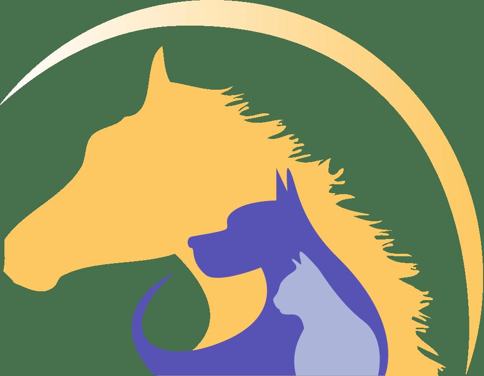 Veterinarian clipart horse. Bvh l yel swish