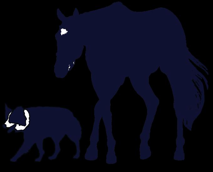 Vet silhouette at getdrawings. Veterinarian clipart horse