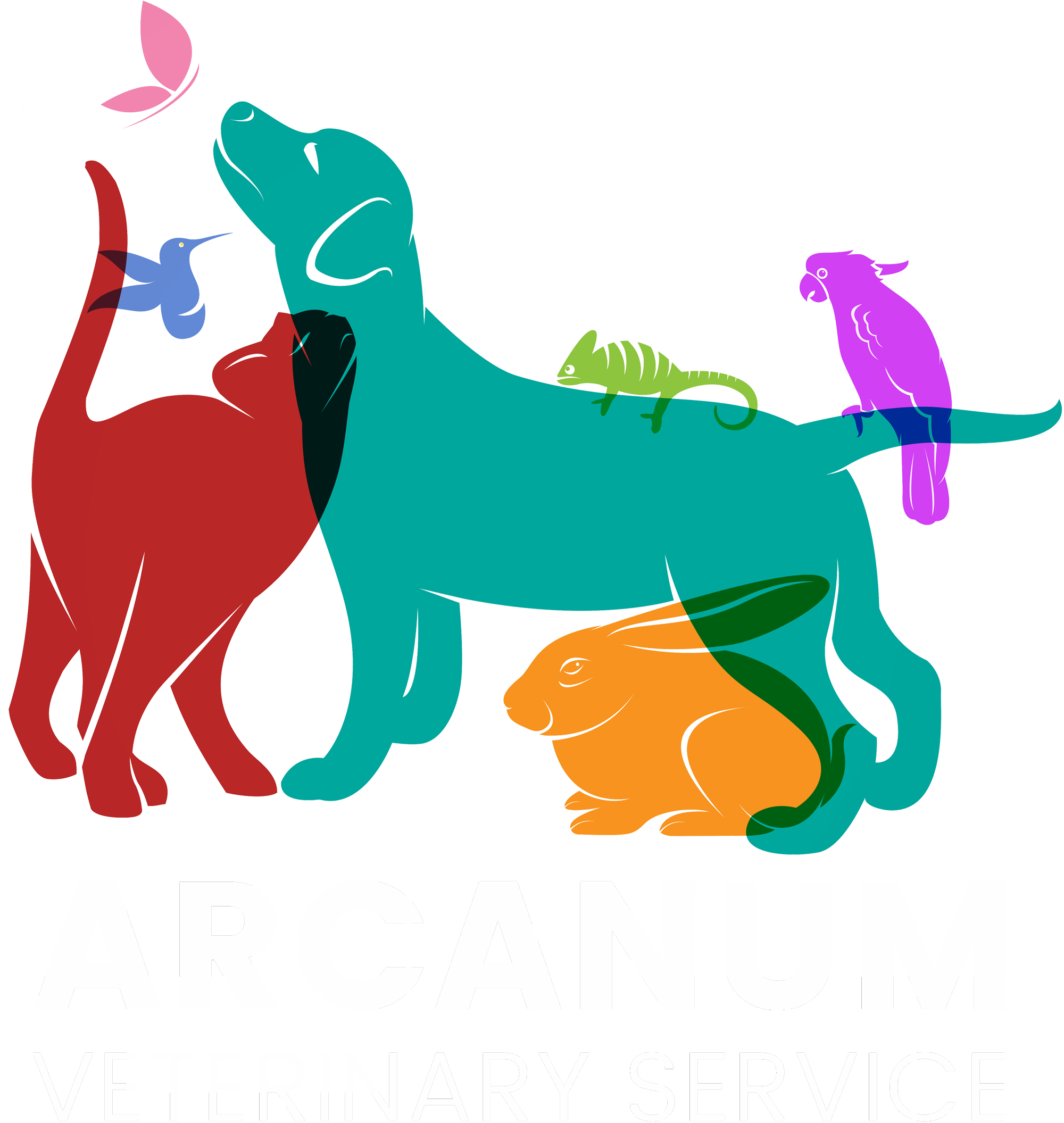 Veterinarian clipart service animal. Interactive arcanum veterinary