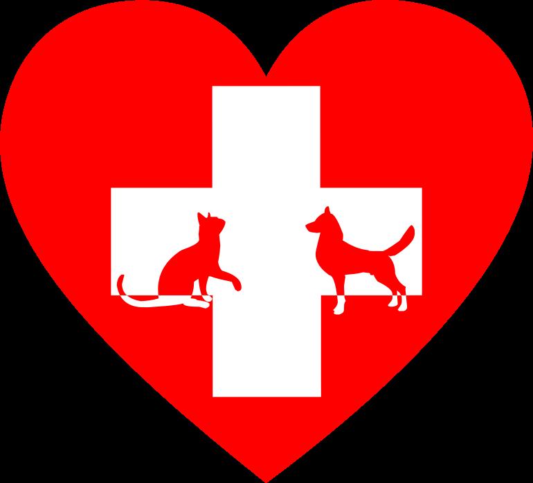 Veterinary first aid heart. Veterinarian clipart veteranarian