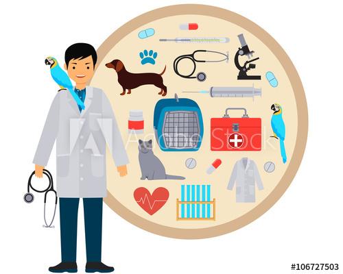 Veterinarian clipart veterinarian tool. Vet equipment and tools