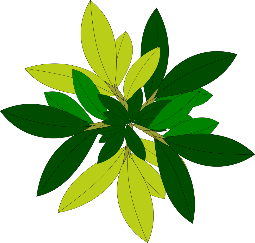 Leaf tree top free. View png files