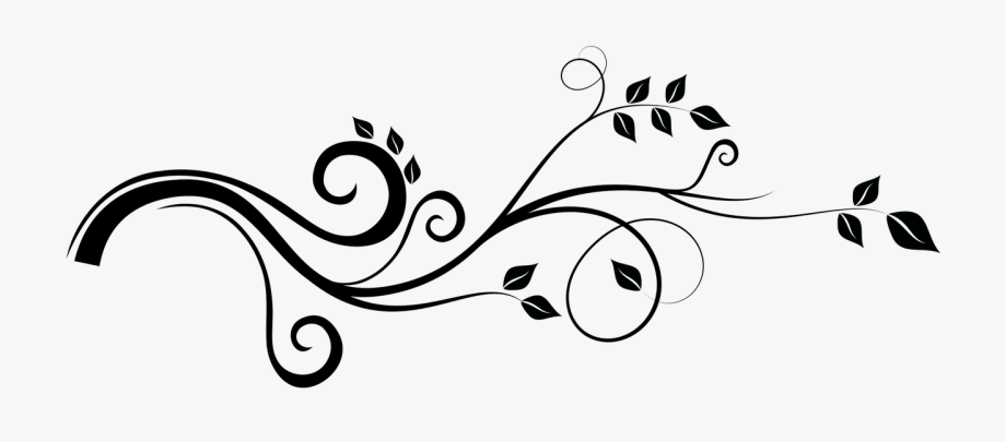 Black and white dibujos. Vines clipart calligraphy