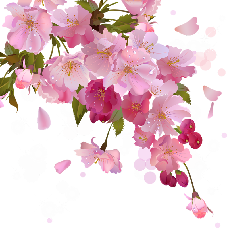 Vines clipart cherry blossom. Flores y letras para