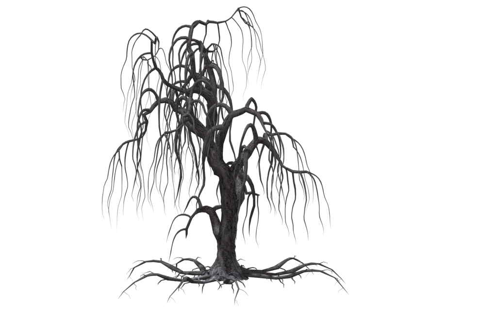 collection of drawing. Vines clipart creepy